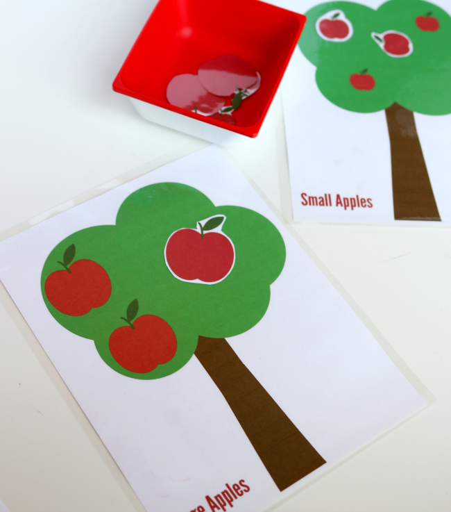 sorting by size apple trees free printable no time for flash cards