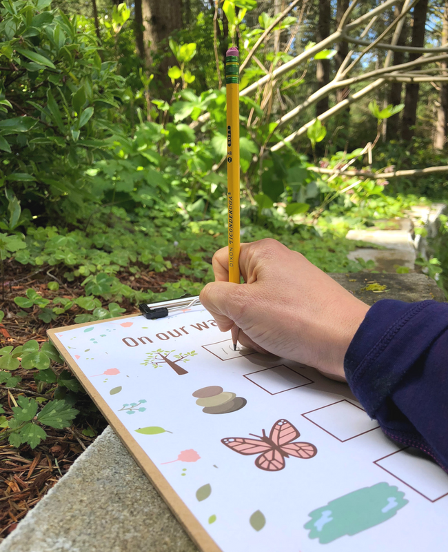 nature walk math activity for preschool and kindergarten