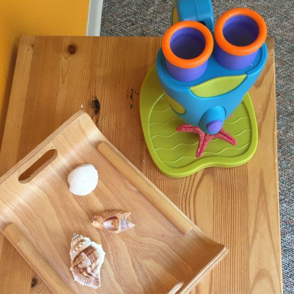 Preschool science center activities
