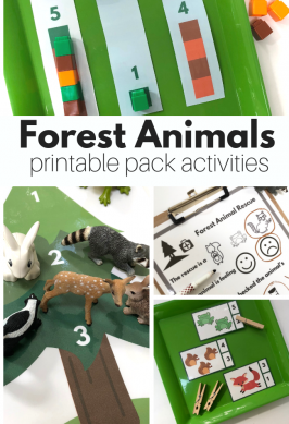 Forest Animals Theme Printable Pack