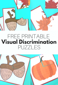 free printable images that can be used for visual discrimination puzzles for early literacy in preschool