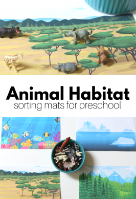 Animal Habitats – Preschool Science Activity