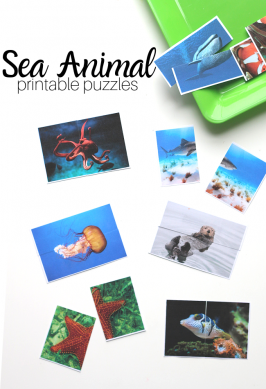 Under The Sea Theme Printable Puzzles for Preschool