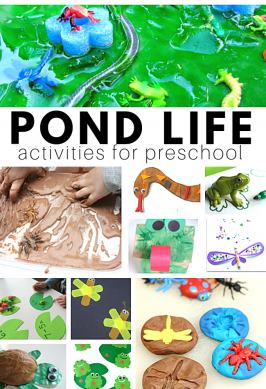 pond life activities for daycare and preschool