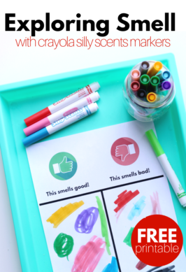 Exploring Smell activity for preschool 266x389