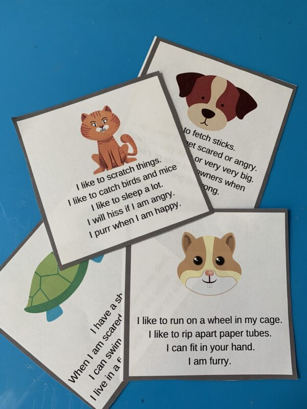 Preschool Pet Activities - No Time For Flash Cards