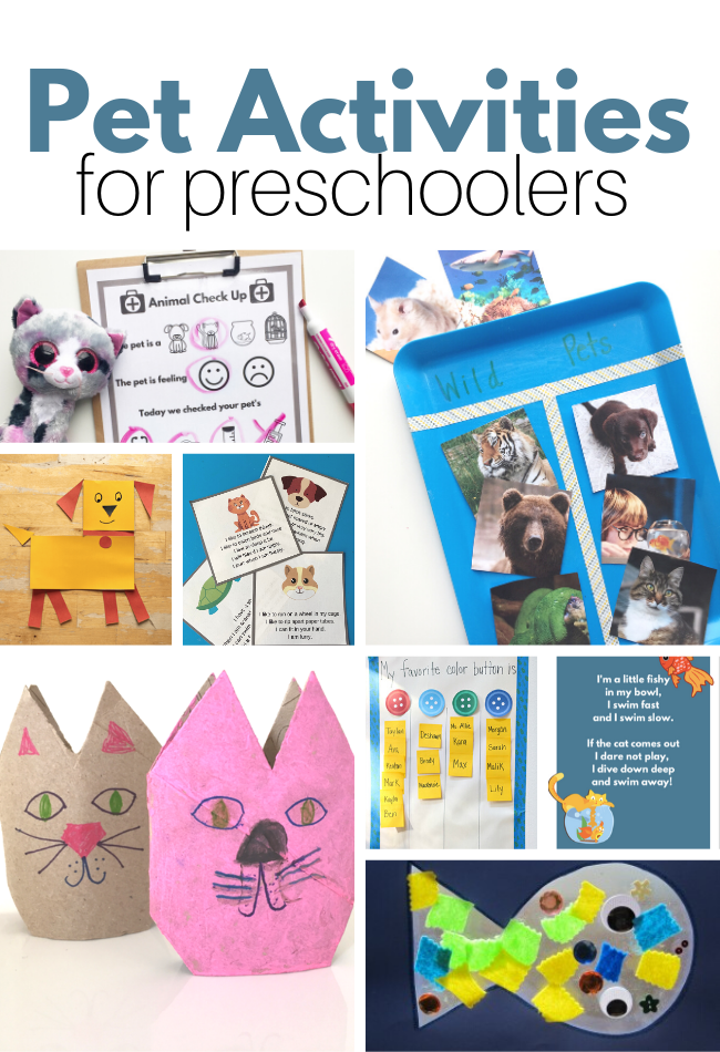 homeschool preschool pet theme activities