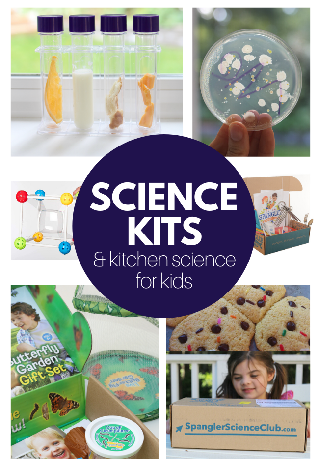 homeschool science ideas for kids