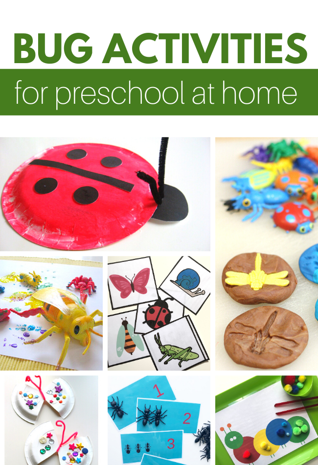 bug themed activities for preschoolers