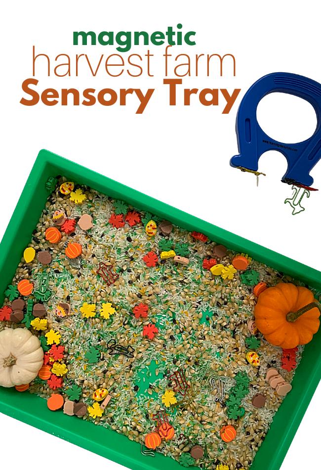 magnetic sensory tray